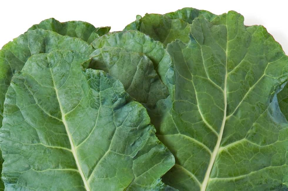 Powerblatt: Broccoleaf
