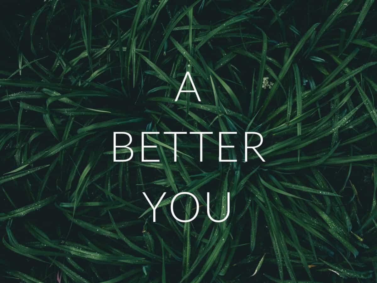 """Neue Rubrik """" A BETTER YOU"""" zeigt Dinge, die dein Leben ein klein wenig nachhaltiger machen"""
