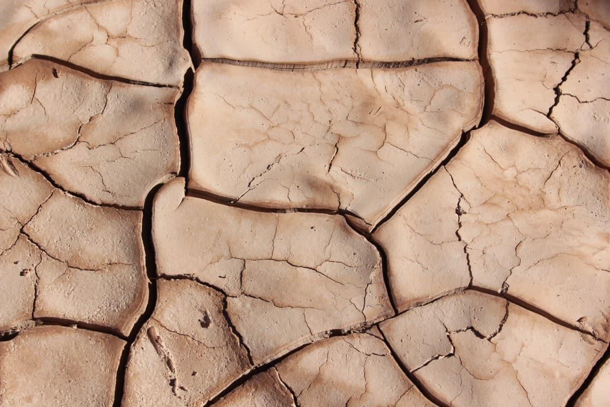 Klimawandel: Das müssen wir jetzt für die Erde tun – und zwar SOFORT