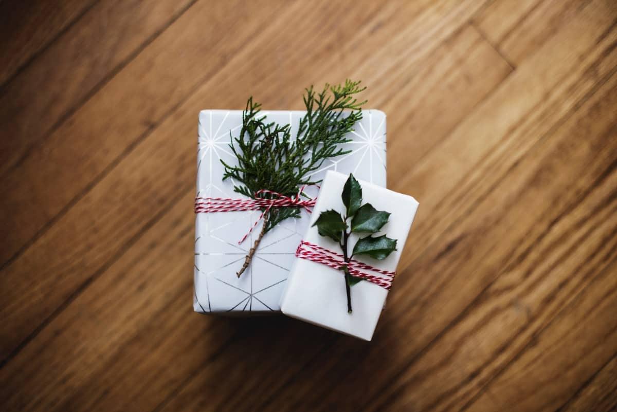 """Du willst etwas """"Grünes"""" & """"Cooles"""" zu Weihnachten verschenken? Wir hätten da einen kleinen Tipp…"""
