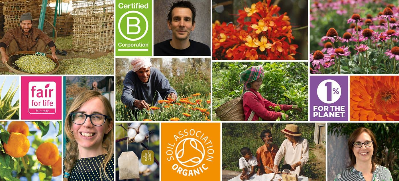 Pukka: Nachhaltiges Handeln für positiven Wandel