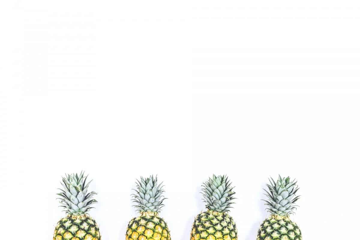 Ananasfasern: Wie Leder, nur besser
