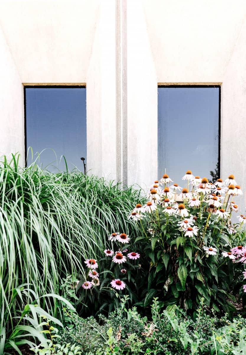 Garten-Essentials für den Frühling