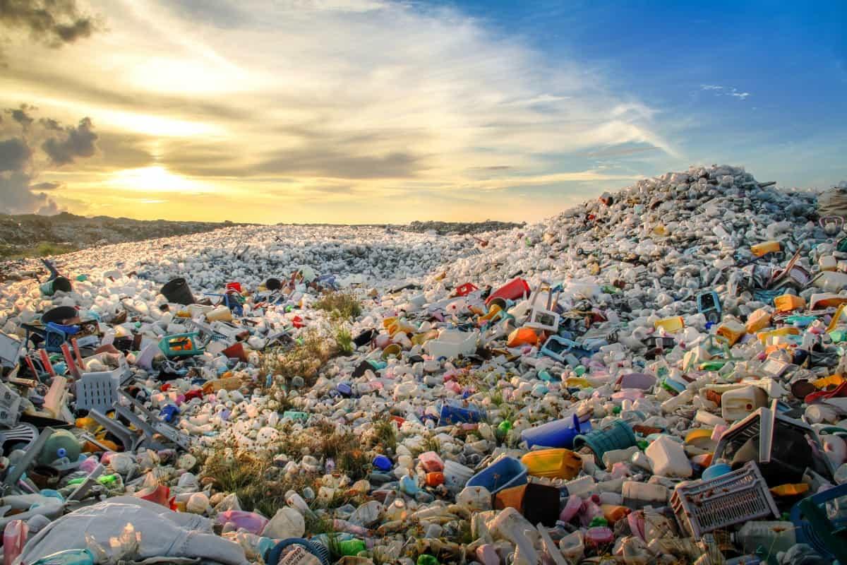 Plastikmüll ist ein großes Problem für die Umweltl. cirplus möchte das nun ändern.