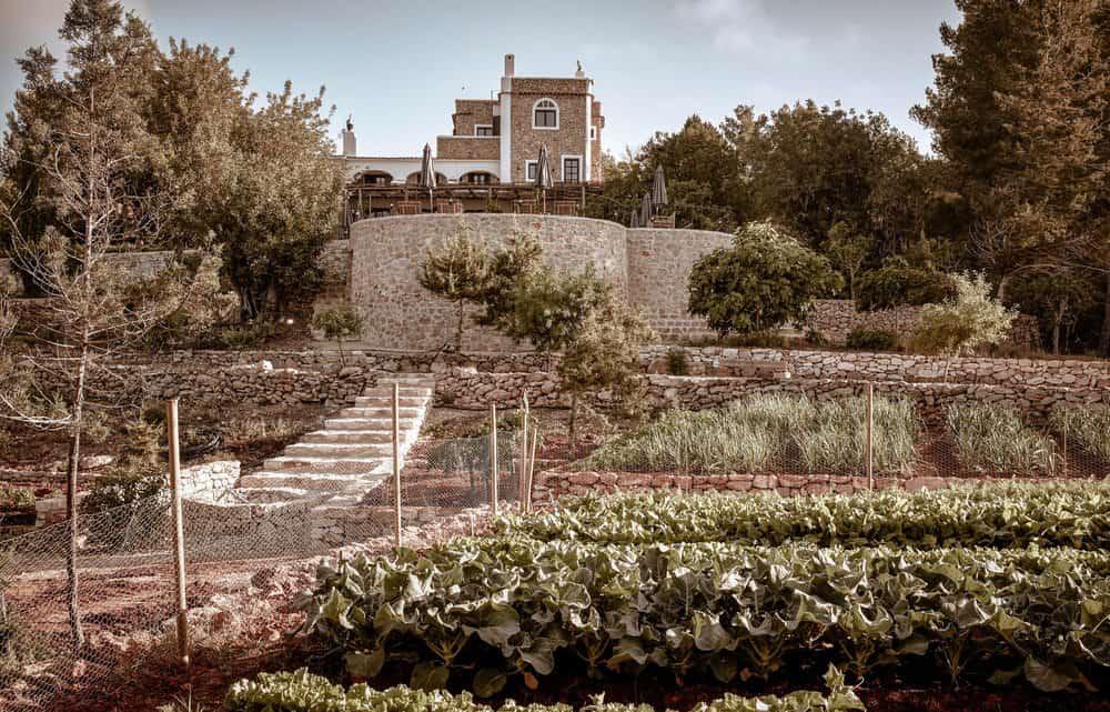 Der Garten des La Granja Ibiza beherbergt mehr als 30 Obst- und Gemüsesorten!