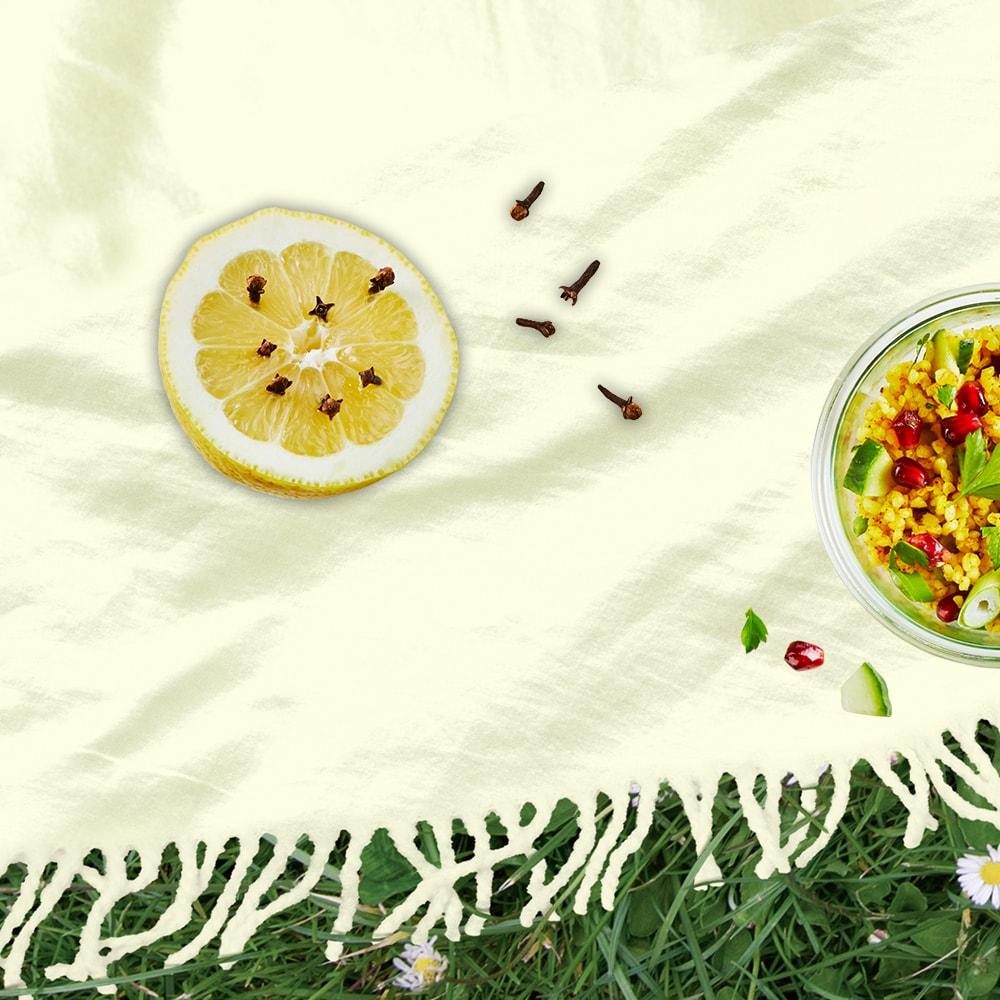 Zitronen und Nelken wirken auf natürliche Weise gegen Insekten  beim Picknick