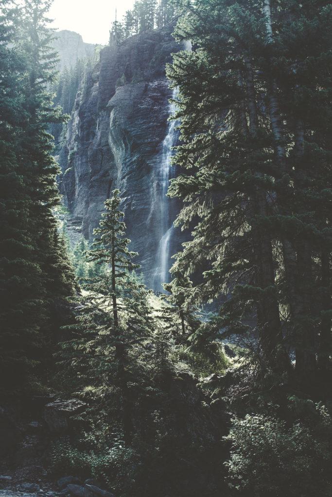 Naturpille Wald