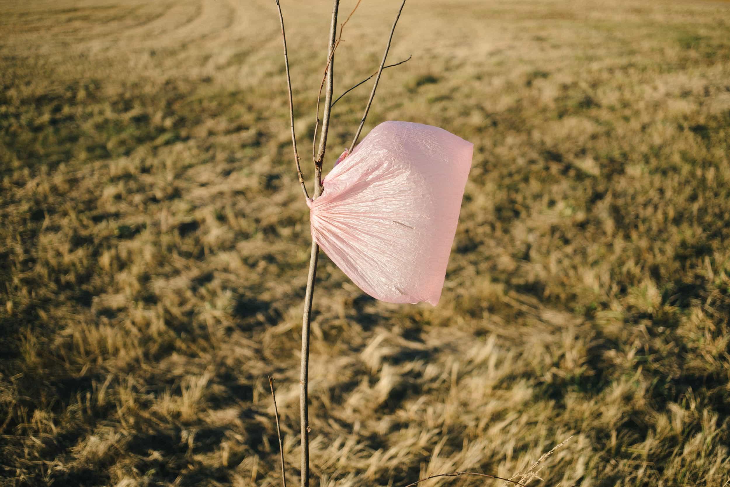 Mikroplastik mit diesen Tipps erkennen und vermeiden