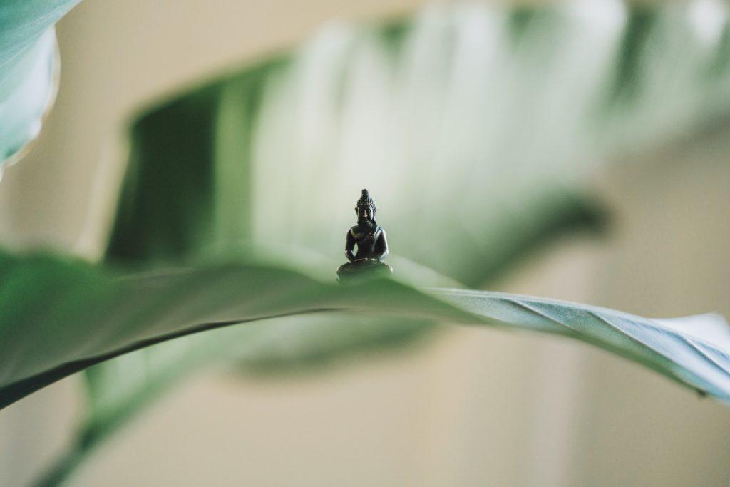 Nachhaltige Yoga-Brands